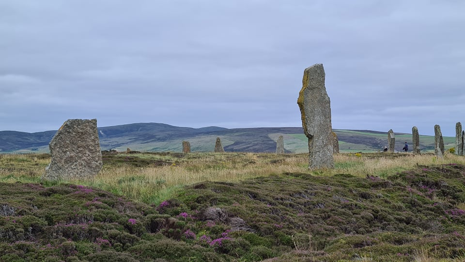 A stone circle on a hill of heather